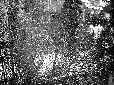 Koeln-Schnee